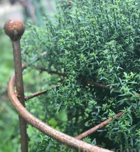 Опора для растений Однокольцовая с сеткой
