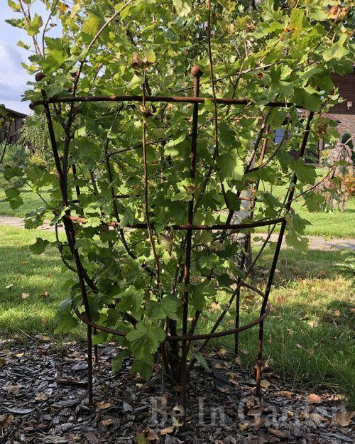 Опора для растений Трехкольцовая